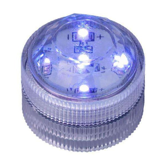 Blue Five LED Submersible Top View In Light