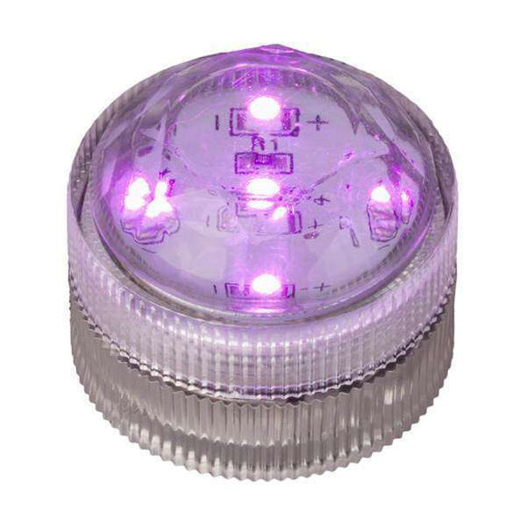 Purple Five LED Submersible Top View In Light