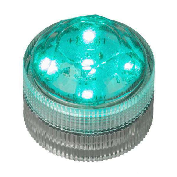 Teal Five LED Submersible Top View In Light