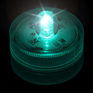 Teal One LED Submersible Top View
