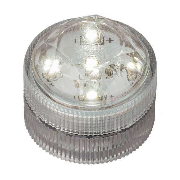 Warm White Five LED Submersible Top View In Light