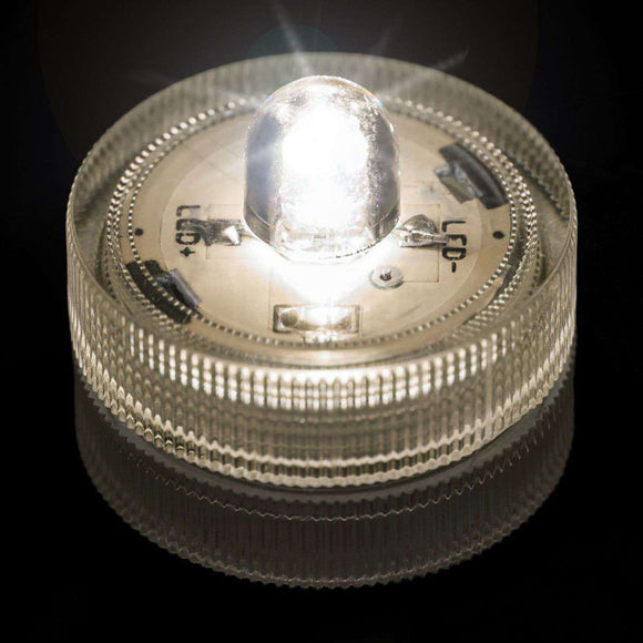 Warm White One LED Submersible Top View
