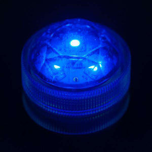 Blue Three LED Submersible Top View