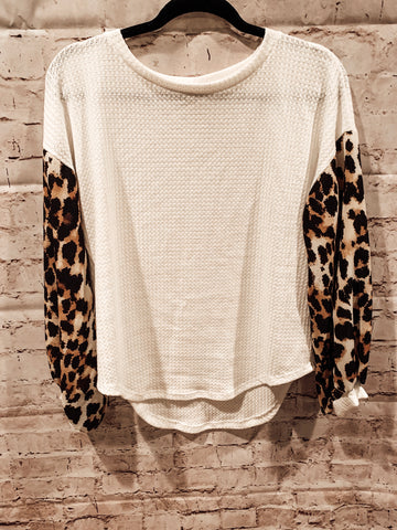 Animal Print Long Sleeve