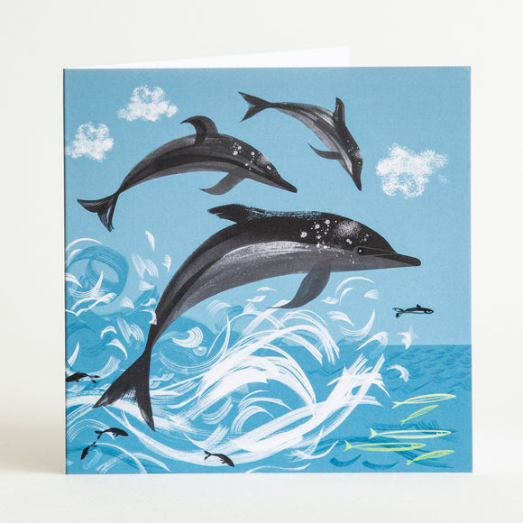 DOLPHIN, PICTURE CARD (Single)