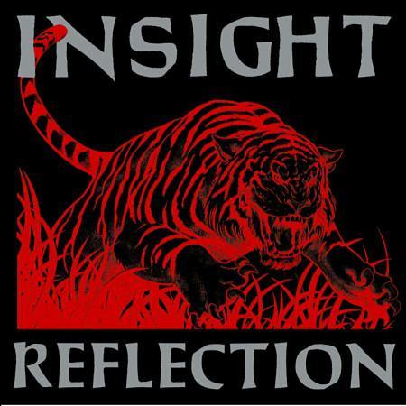 "Insight ""Reflection"" 12"""