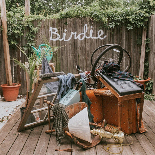 "Slaughter Beach, Dog ""Birdie"" LP"