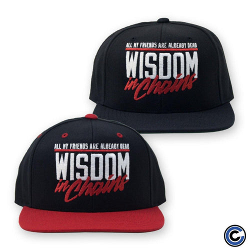 "Wisdom In Chains ""All My Friends"" Snapback"