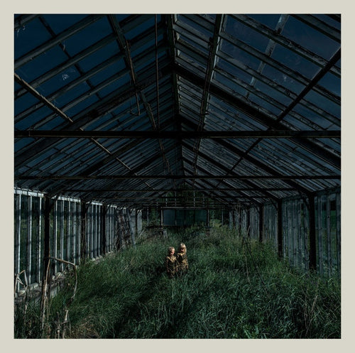 "Foxing ""Dealer"" LP"