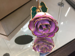 24K Gold Rose Cream Color
