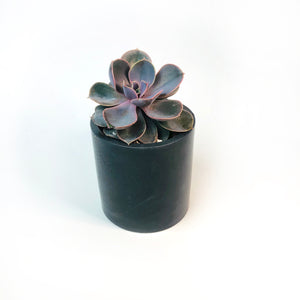 Round Concrete Planter + Vessel - Dark Charcoal