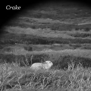 "Crake / Enough Salt (For All Dogs) b/w Gef - 7"" Vinyl"