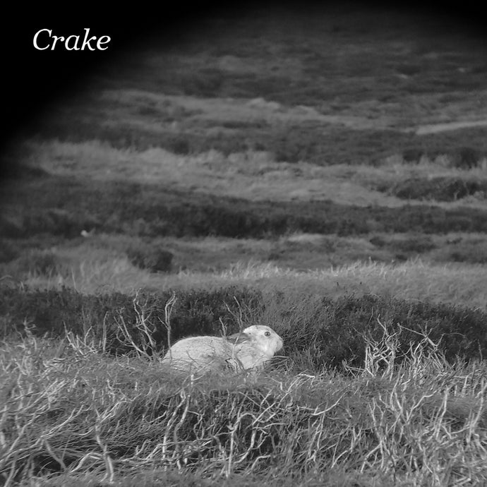 Crake / Enough Salt (For All Dogs) b/w Gef - 7