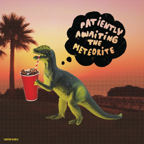 Patiently Awaiting The Meteorite / Canyon Diablo - LP