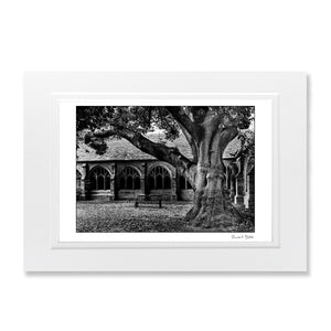 B&W Art Print New College Oxford Harry potter