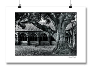 B&W Art Print New College Oxford