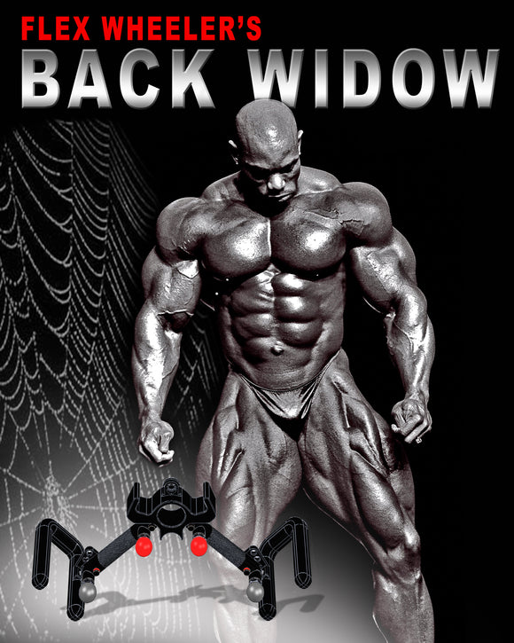 Back Widow