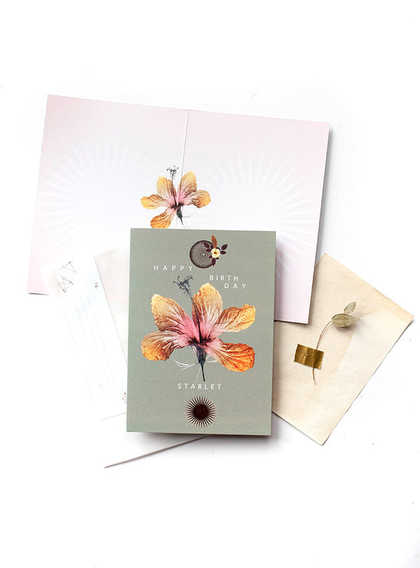 Greeting Card, Hibiscus
