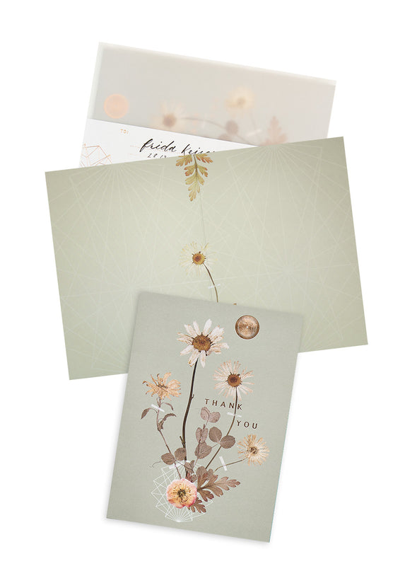 Sepia Daisy Greeting Card with envelope