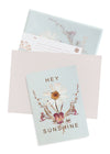 Greeting Card, Sun Daisy