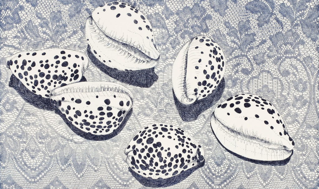 Brian Robinson: 'Cowries in a floral landscape'. 2015