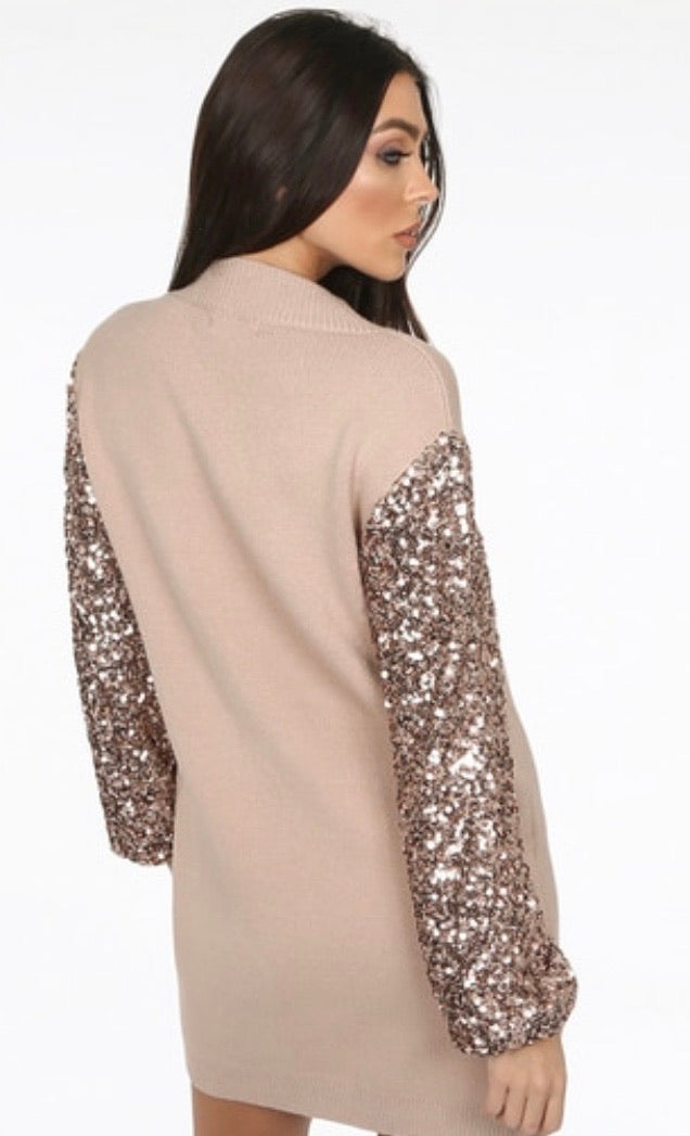 Davina Sequin Sleeve Jumper Dress
