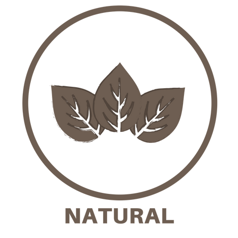 lexy-natural-icon