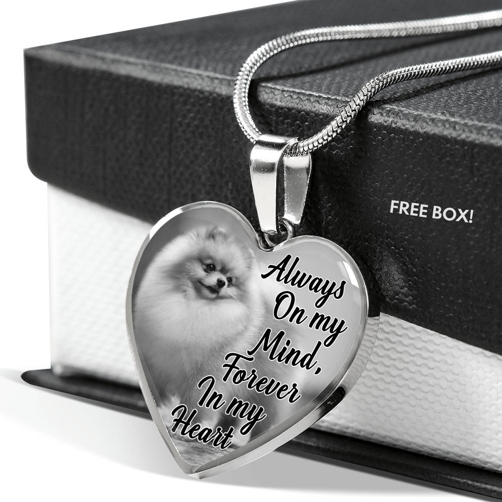 Pomeranian Dog Memorial Always On My Mind, Forever In My Heart Personalized Name Engraved Pet Remembrance Gift Necklace
