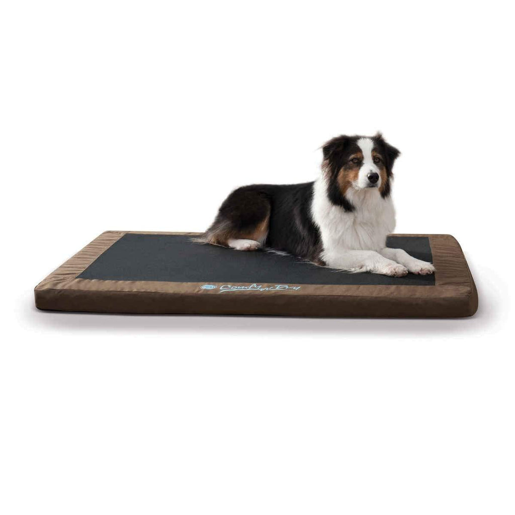 Comfy n' Dry Indoor-Outdoor Pet Bed Large Chocolate 36″ x 48″ x 2.5″