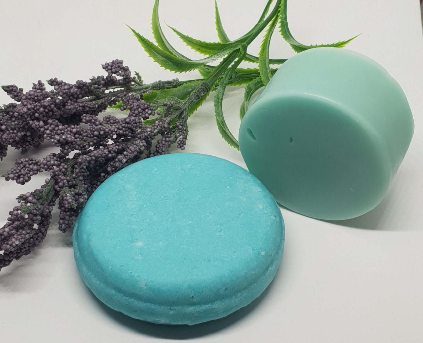 Shampoo and Conditioner Bar Set - Rosemary, Mint and Argan Oil - Splash-&-Sass