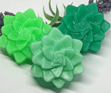 Set of 3 Succulent Soap Bars - Splash-&-Sass