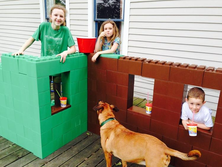 Build all types of fun objects with the kids (and dog)