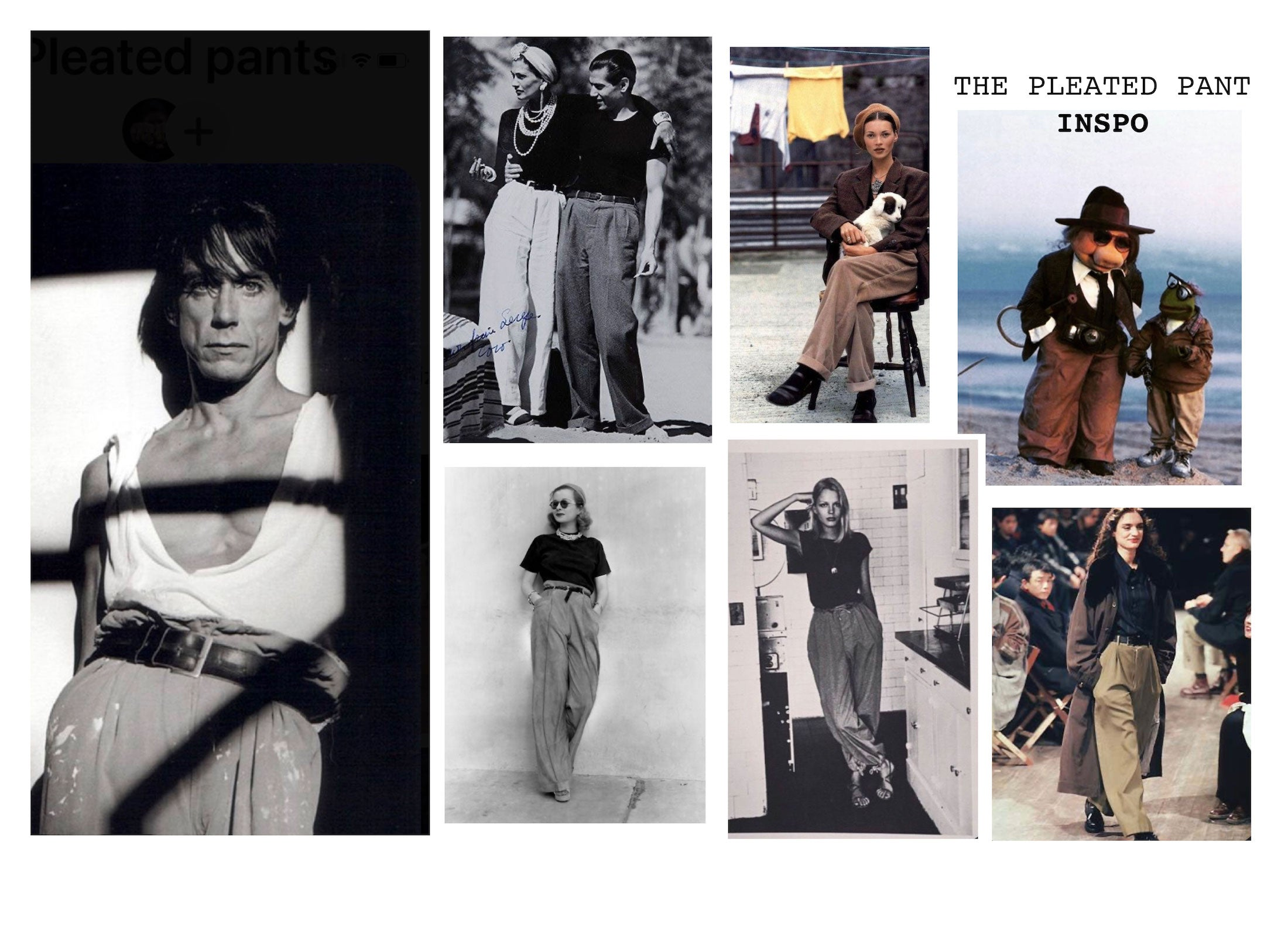 The Pleated Pant Inspo