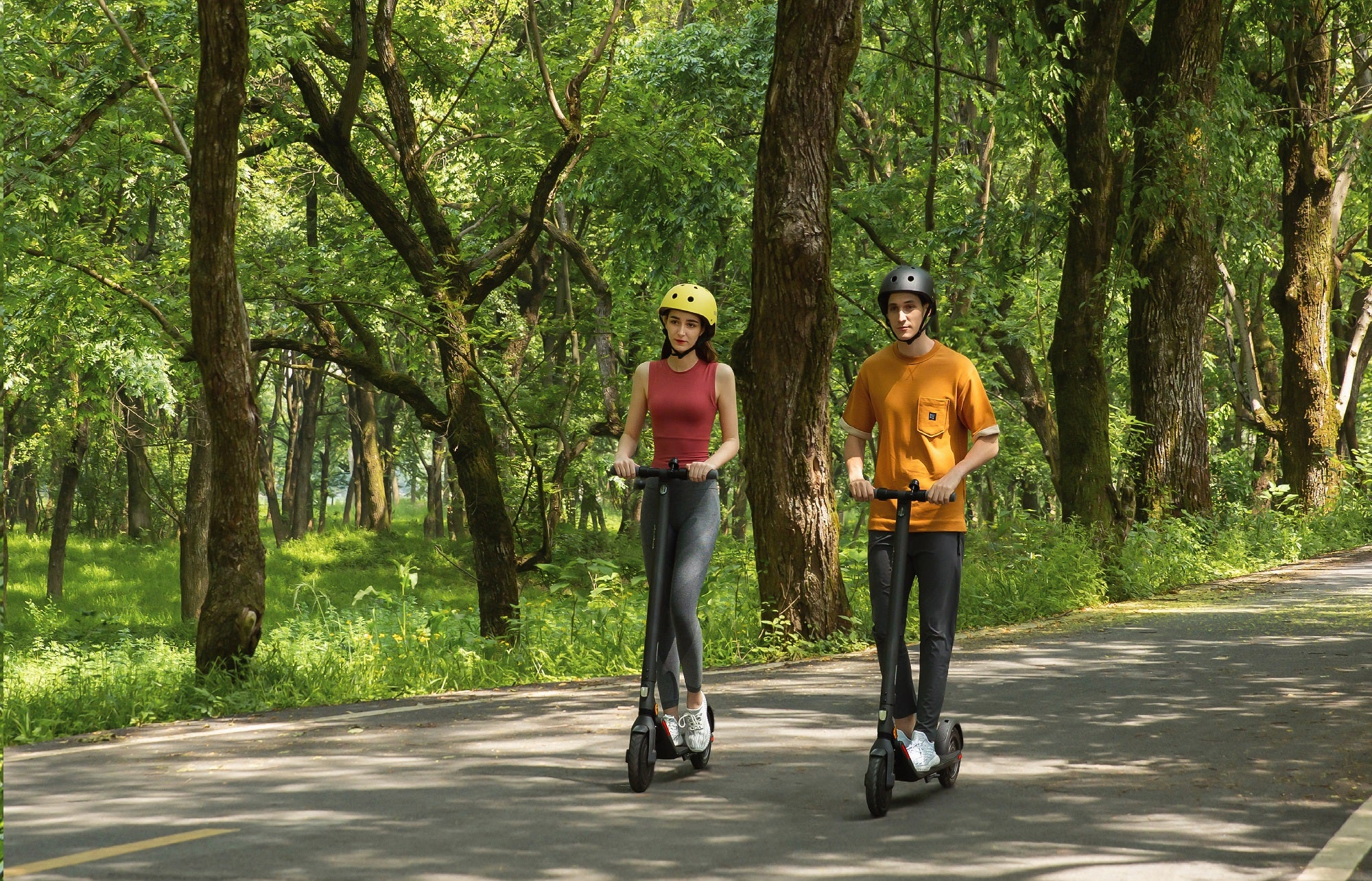 Segway Ninebot E25E Electric Scooter