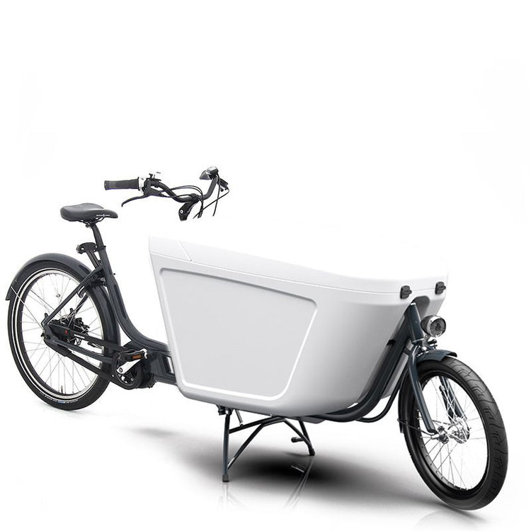 Raleigh Pro Bike Mid Motor Electric Cargo Bike - 2021