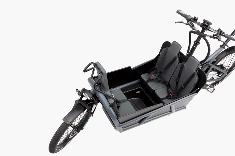 Riese & Müller Load 75 Vario Electric Cargo Bike - 2020