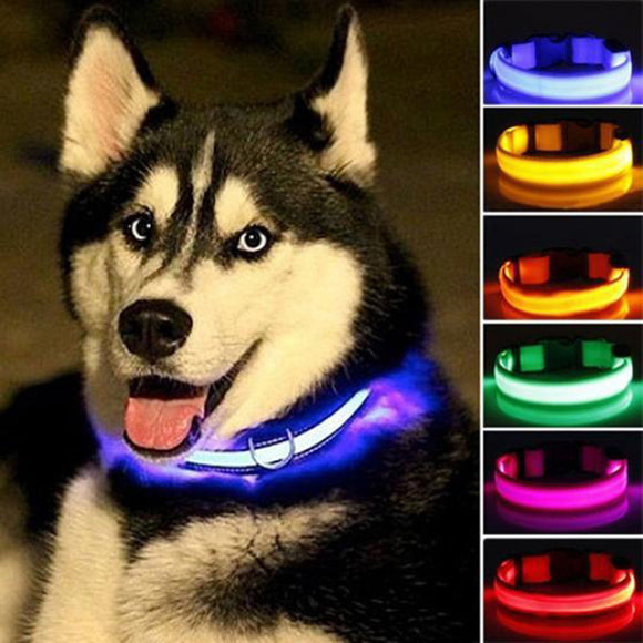 Nylon LED Flashing Glow In The Dark Dog Collar For Night Safety