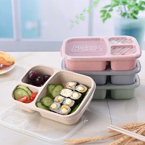 3 Grid Lunchbox