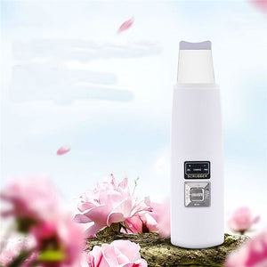 Ultrasonic Facial Cleaner