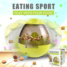 Pet IQ Food Ball