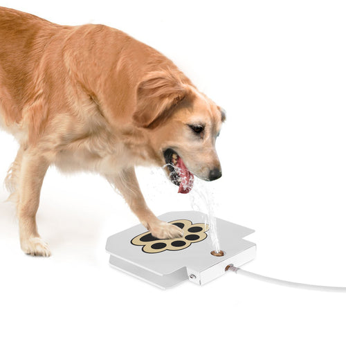 Pet Water Fountain Pedal