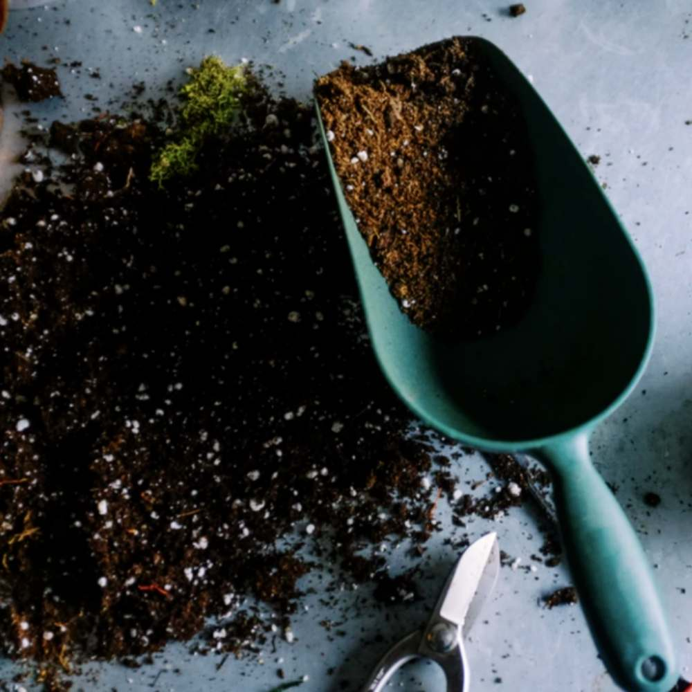 guide to compost