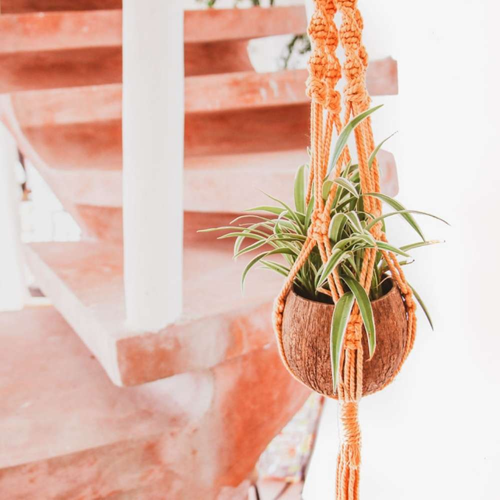 Coconut Hanging Indoor Plant Pot