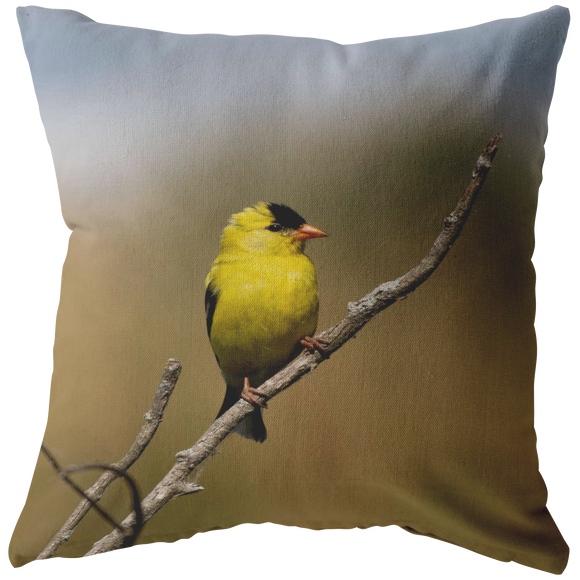 """NICK WILLIAMS: Gold Finch"" Pillow"