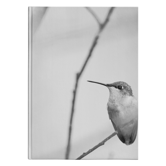 """NICK WILLIAMS: Hummingbird"" Hardcover Journal"