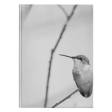 """Humming Bird"" Hardcover Journal: Small, and Large Sizes Available"