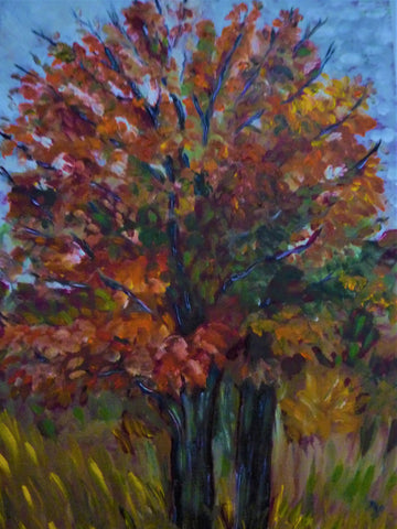 Maple tree, autumn