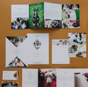 Pet Marketing Suite
