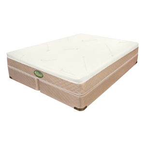 "Perfections 9"" Frame Free Mattress ""Sponge Bed"""