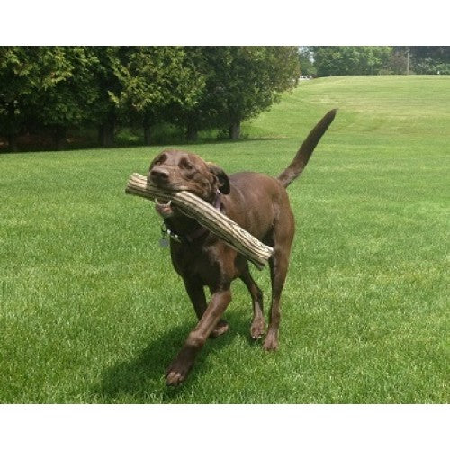 Eco Fetchin' Stick™